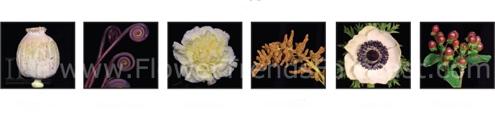 Flower Trends Forecast 2014 grand lodge Flowers.  Poppy pod, uhule fern, carnation, amaranthus, anemone, hypericum