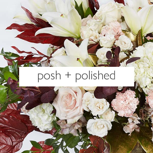 posh + polished
