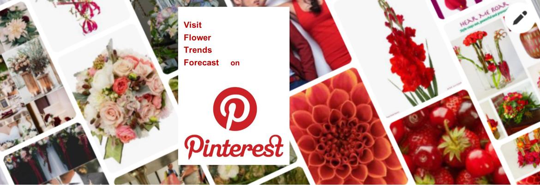 Follow us on Pintrest!