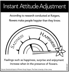 Instant Attitude Adjustment