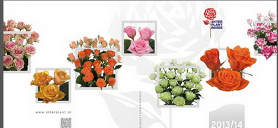 Interplant Catalog 2013