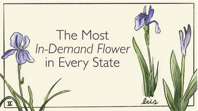 The Most in-Demand Flowers