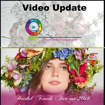 Bridal Video