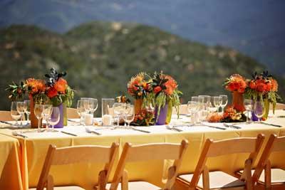 Pincushion Protea Stars at Field To Vase Dinner