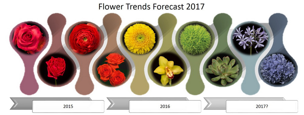 Flower Trends Evolve for 2017