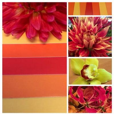Flower Factor Blog