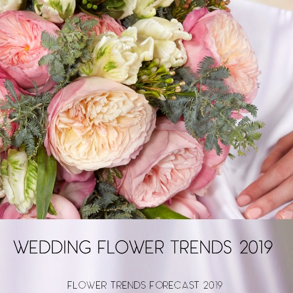 Flower Trends Forecast Trends