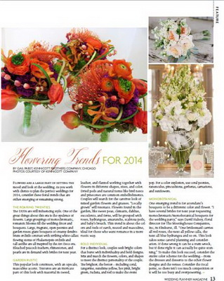 Wedding Planer Magazine